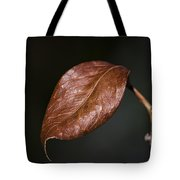 Autumn Is Back Tote Bag