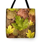 autumn is coming 5 - A carpet of autumn color leaves  Tote Bag