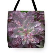 Autumn Joy Tote Bag