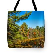 Autumn Lake 4 Tote Bag