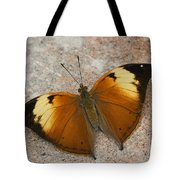 Autumn Leaf Butterfly Tote Bag