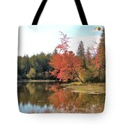 Autumn Leaning Tree Tote Bag