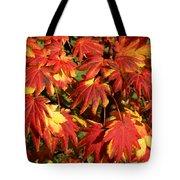 Autumn Leaves 08 Tote Bag
