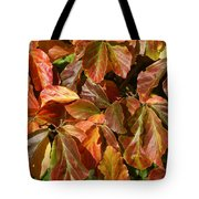 Autumn Leaves 81 Tote Bag