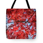 Autumn Leaves And Blue Sky Tote Bag