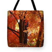 Autumn Leaves Tote Bag by Carol Groenen