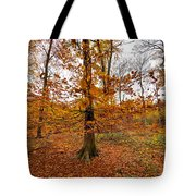 Autumn Leaves Common Wood  Tote Bag
