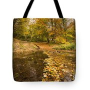 Autumn Leaves In A Burn Tote Bag