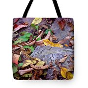 Autumn Leaves In Creek Bed Tote Bag