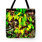 Autumn Leaves In Green And Yellow Tote Bag