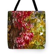 Autumn Leaves In Palo Duro Canyon 110213.97 Tote Bag