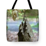 Autumn Leaves In Summer Tote Bag