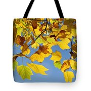 Autumn Leaves Of The Tulip Tree Tote Bag