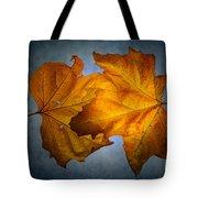 Autumn Leaves On Blue Tote Bag