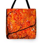 Glorious Autumn Leaves Tote Bag