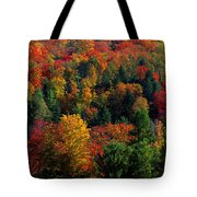 Autumn Leaves Vermont Usa Tote Bag