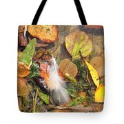 Autumn Leavings Tote Bag