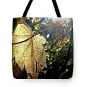 Autumn Light On Leaf Tote Bag