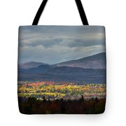 Painting With Autumn Light Tote Bag