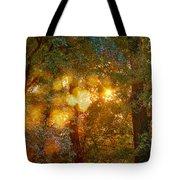 Autumn Light Symphony Tote Bag