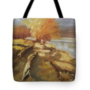 Autumn Light2 Tote Bag