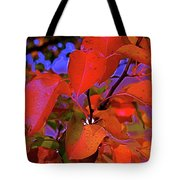 Autumn Magic 1 Tote Bag