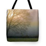 Autumn Maple At Dawn Tote Bag