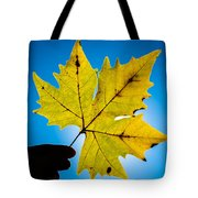 Autumn Maple Leaf In The Sun Tote Bag