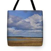 Autumn Marsh At Shell Island Tote Bag