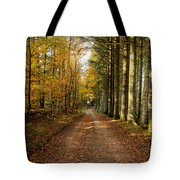 Autumn Mood In The Forrest Tote Bag