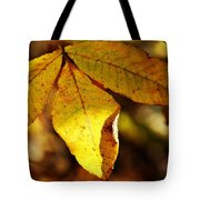 Autumn Moon Tote Bag by JAMART Photography