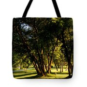 Autumn Morning Stroll Tote Bag