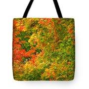 Autumn Mosaic Nj Tote Bag