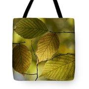 Autumn Mosaic Tote Bag