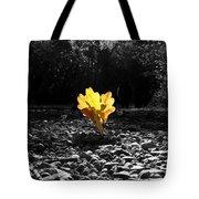 Autumn Oak Isolations Tote Bag