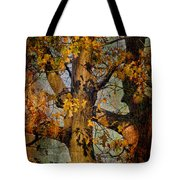 Autumn Oaks In Dance Mode Tote Bag