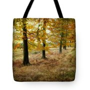 Autumn On Cannock Chase Tote Bag