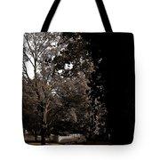 Autumn On Maple Road Tote Bag