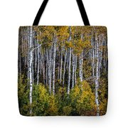 Autumn On Mcclure Pass Tote Bag