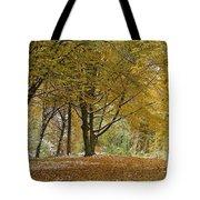 autumn on Moenchsberg in Salzburg Tote Bag