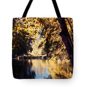 Autumn On The Applegate Tote Bag