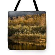 Autumn On The Klamath 3 Tote Bag