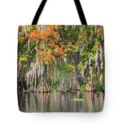 Autumn On The St. Johns Tote Bag