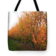 Autumn Orchard Tote Bag