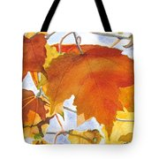 Autumn Outside My Window Tote Bag