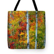 Autumn Palette Tote Bag by Mary Amerman