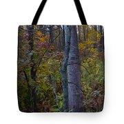 Autumn Panorama Tote Bag