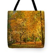 Autumn Park Tote Bag