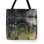Autumn Pond Tote Bag
