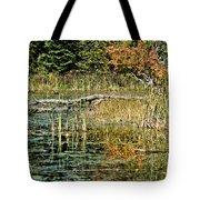 Autumn Pond Scene Tote Bag